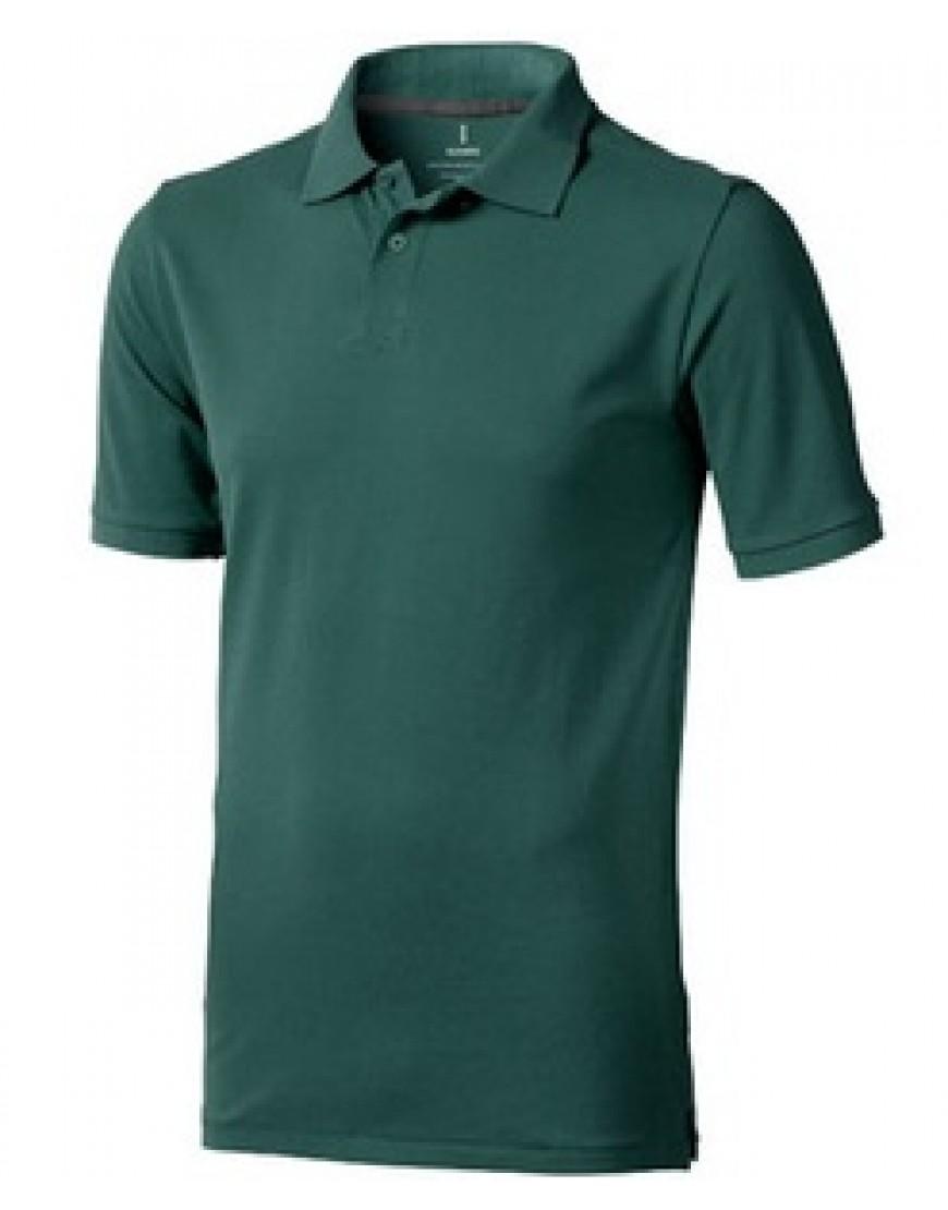 Polo krekls (zaļš, balts)